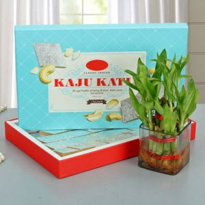 Lucky Wishes With Kaju Katli